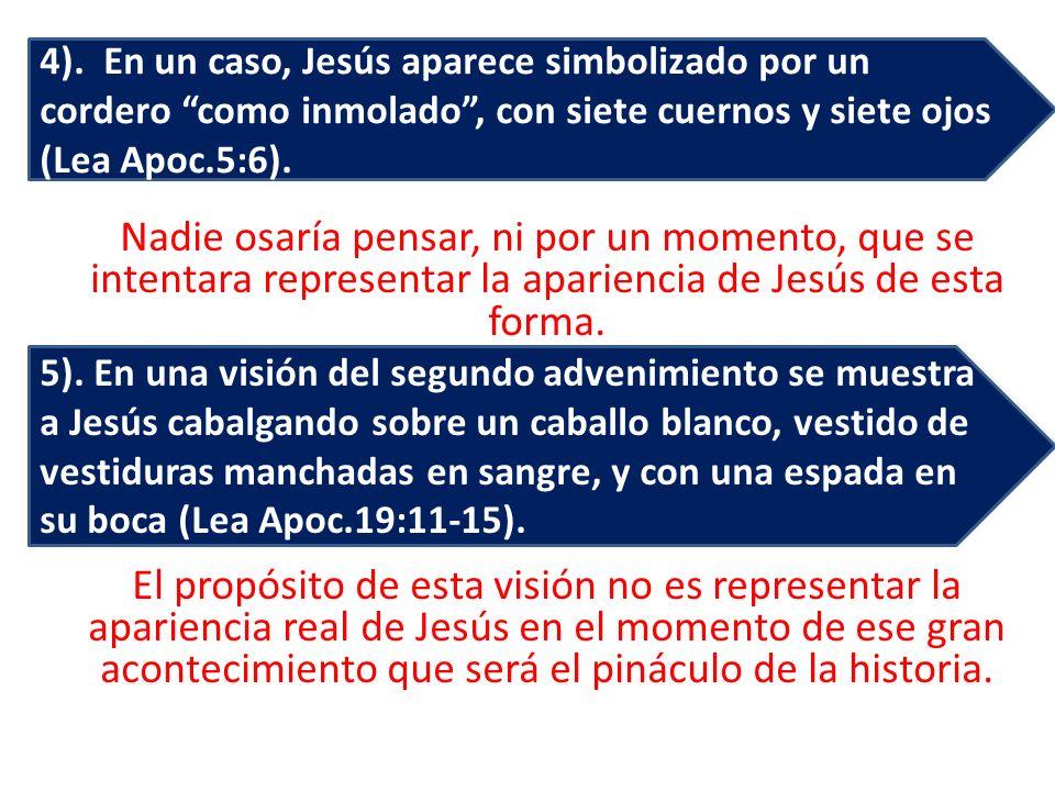 Nadie osaría pensar, ni por un momento, que se intentara representar la apariencia de Jesús de esta forma. El propósito de esta visión no es represent