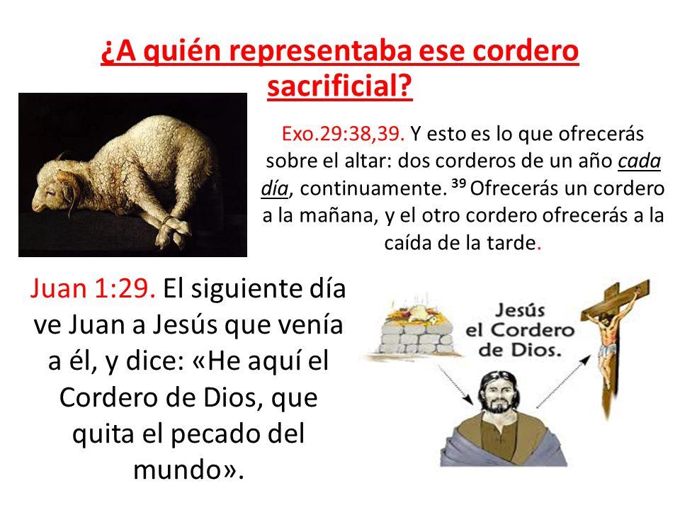 ¿A quién representaba ese cordero sacrificial? Juan 1:29. El siguiente día ve Juan a Jesús que venía a él, y dice: «He aquí el Cordero de Dios, que qu