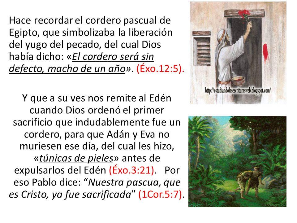 Hace recordar el cordero pascual de Egipto, que simbolizaba la liberación del yugo del pecado, del cual Dios había dicho: «El cordero será sin defecto