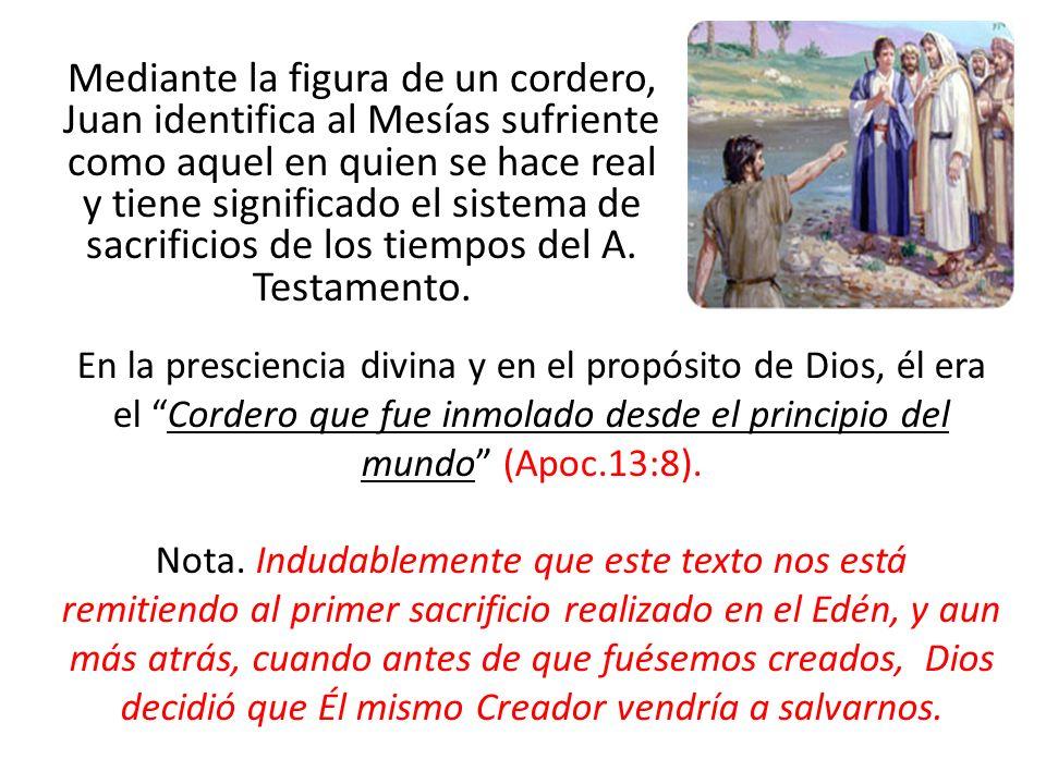 Mediante la figura de un cordero, Juan identifica al Mesías sufriente como aquel en quien se hace real y tiene significado el sistema de sacrificios d