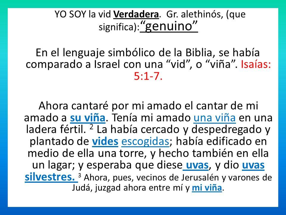 YO SOY la vid Verdadera. Gr. alethinós, (que significa): genuino En el lenguaje simbólico de la Biblia, se había comparado a Israel con una vid, o viñ