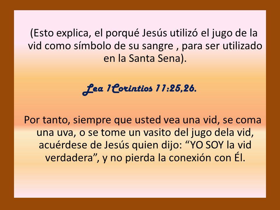 (Esto explica, el porqué Jesús utilizó el jugo de la vid como símbolo de su sangre, para ser utilizado en la Santa Sena). Lea 1Corintios 11:25,26. Por