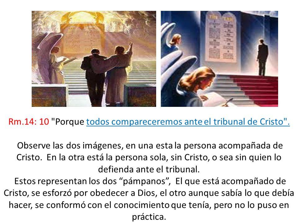 Rm.14: 10
