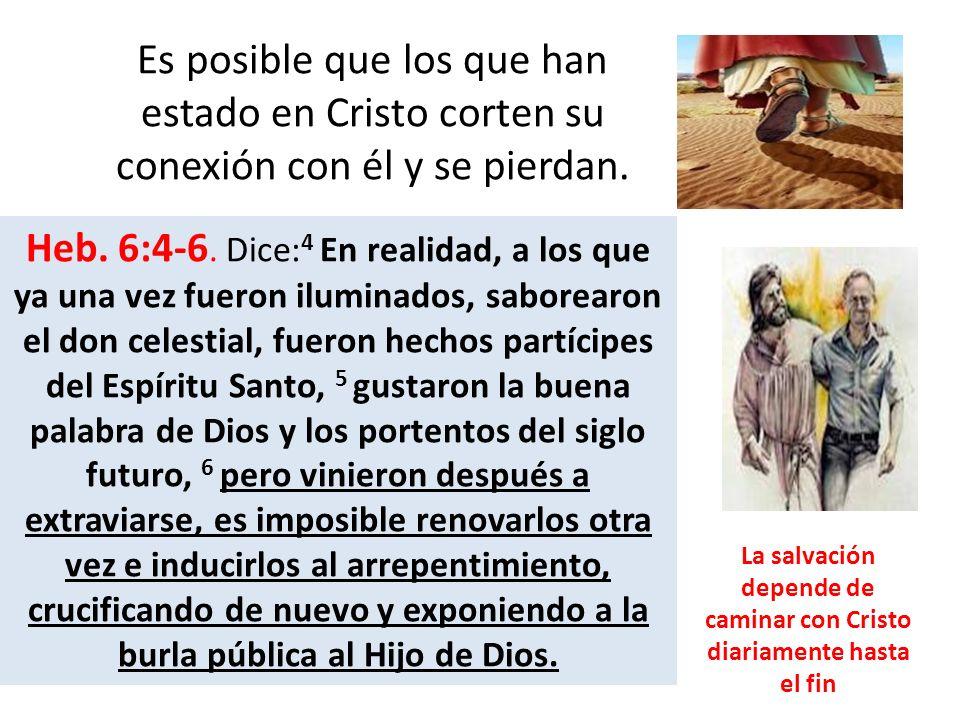 Es posible que los que han estado en Cristo corten su conexión con él y se pierdan. Heb. 6:4-6. Dice: 4 En realidad, a los que ya una vez fueron ilumi