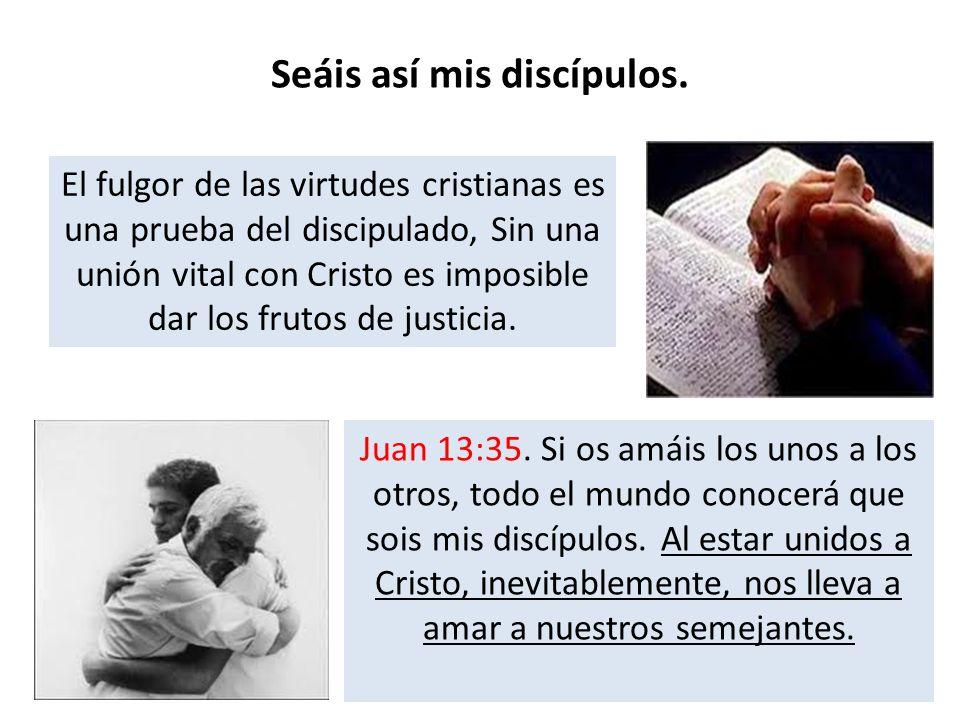 Seáis así mis discípulos. El fulgor de las virtudes cristianas es una prueba del discipulado, Sin una unión vital con Cristo es imposible dar los frut