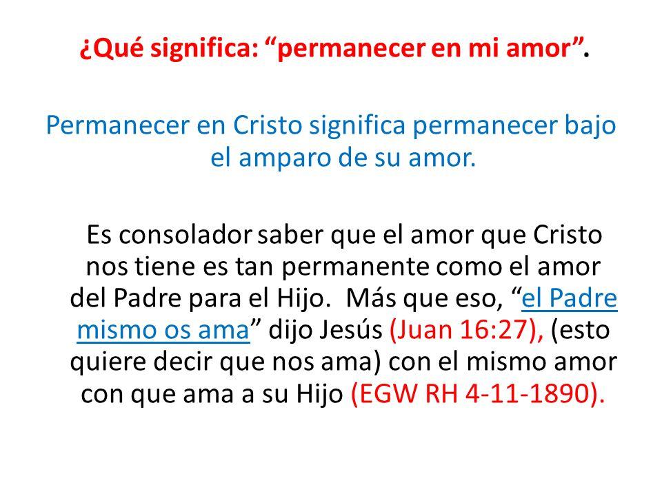 ¿Qué significa: permanecer en mi amor. Permanecer en Cristo significa permanecer bajo el amparo de su amor. Es consolador saber que el amor que Cristo