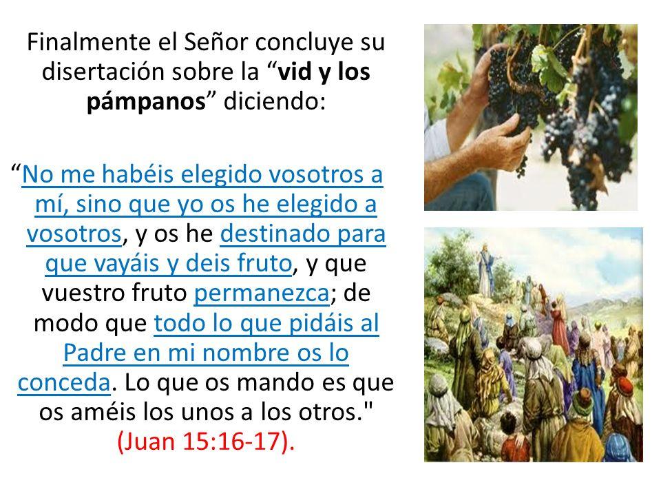 Finalmente el Señor concluye su disertación sobre la vid y los pámpanos diciendo: No me habéis elegido vosotros a mí, sino que yo os he elegido a voso