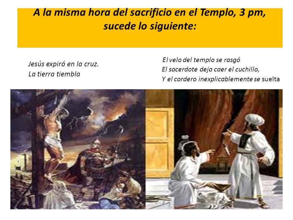 A la misma hora del sacrificio en el Templo, 3 pm, sucede lo siguiente: Jesús expiró en la cruz. La tierra tiembla E l velo del templo se rasgó El sac