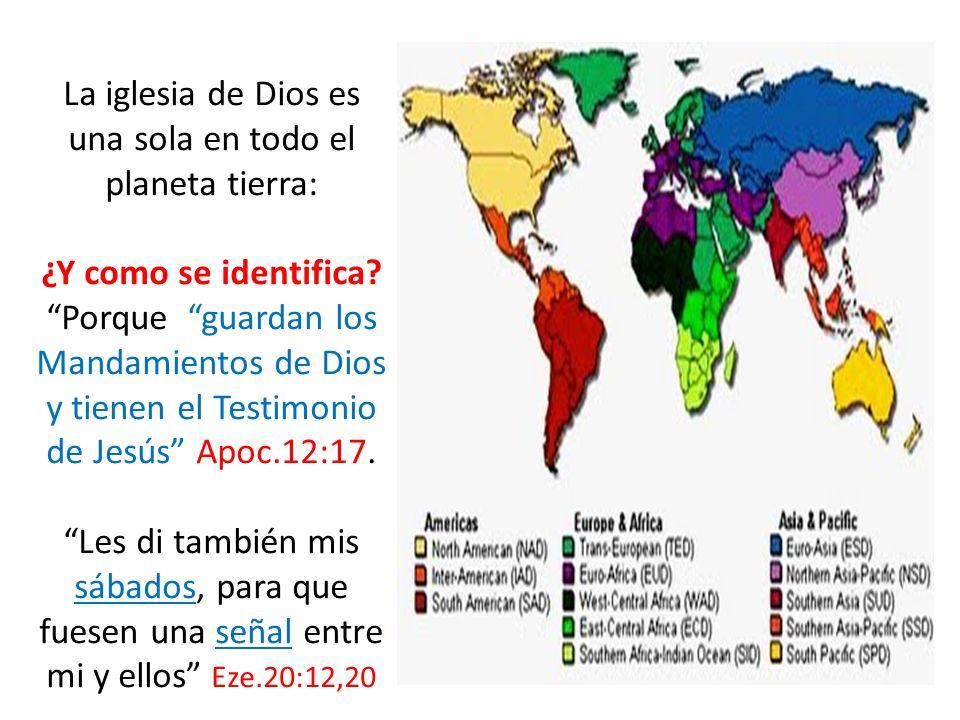 La iglesia de Dios es una sola en todo el planeta tierra: ¿Y como se identifica? Porque guardan los Mandamientos de Dios y tienen el Testimonio de Jes