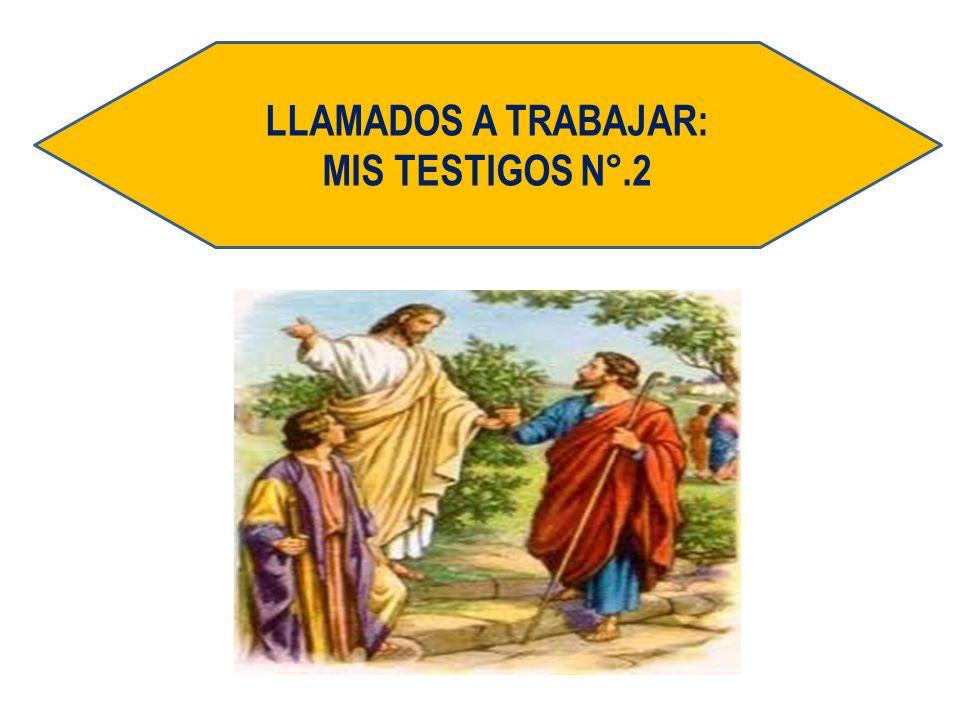 LLAMADOS A TRABAJAR: MIS TESTIGOS N°.2