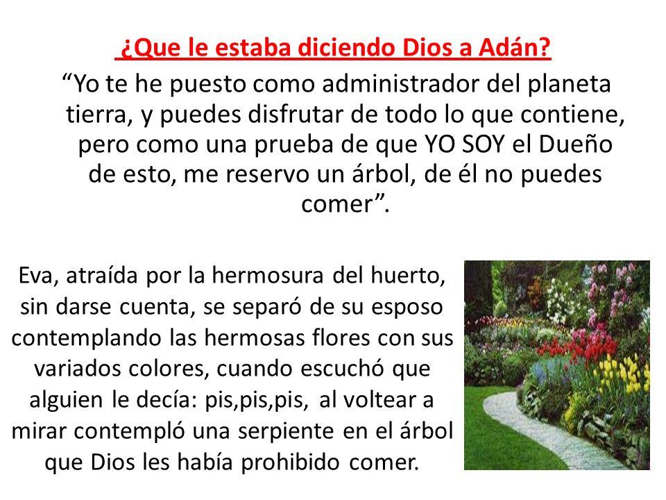 ¿Que le estaba diciendo Dios a Adán? Yo te he puesto como administrador del planeta tierra, y puedes disfrutar de todo lo que contiene, pero como una
