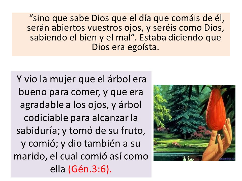 sino que sabe Dios que el día que comáis de él, serán abiertos vuestros ojos, y seréis como Dios, sabiendo el bien y el mal. Estaba diciendo que Dios