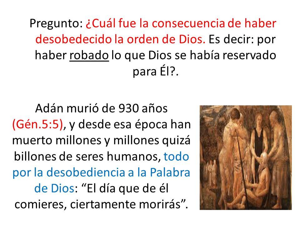 Pregunto: ¿Cuál fue la consecuencia de haber desobedecido la orden de Dios. Es decir: por haber robado lo que Dios se había reservado para Él?. Adán m