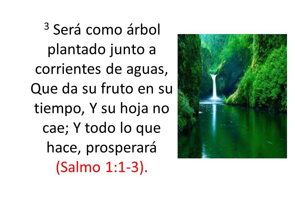 3 Será como árbol plantado junto a corrientes de aguas, Que da su fruto en su tiempo, Y su hoja no cae; Y todo lo que hace, prosperará (Salmo 1:1-3).