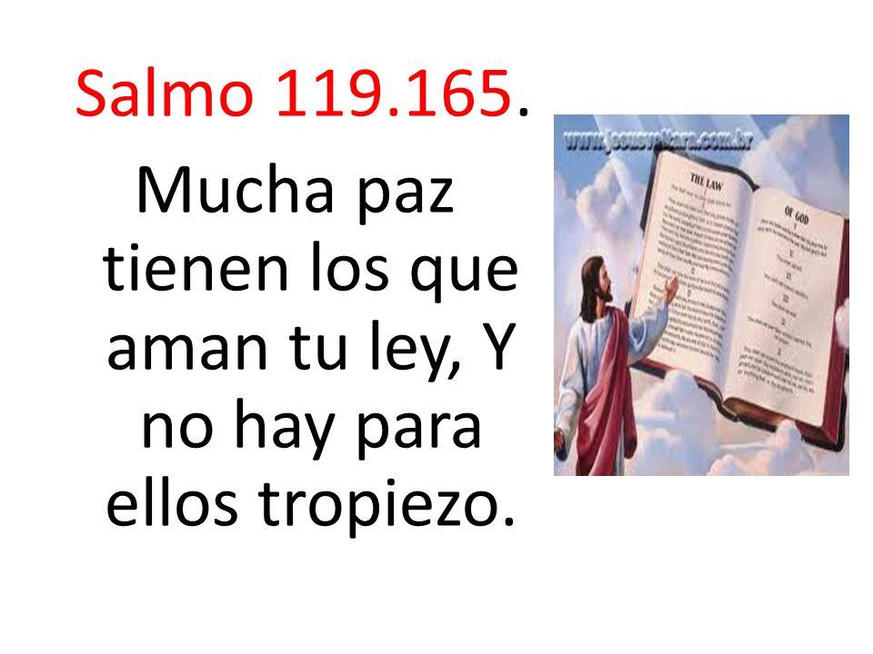 Salmo 119.165. Mucha paz tienen los que aman tu ley, Y no hay para ellos tropiezo.