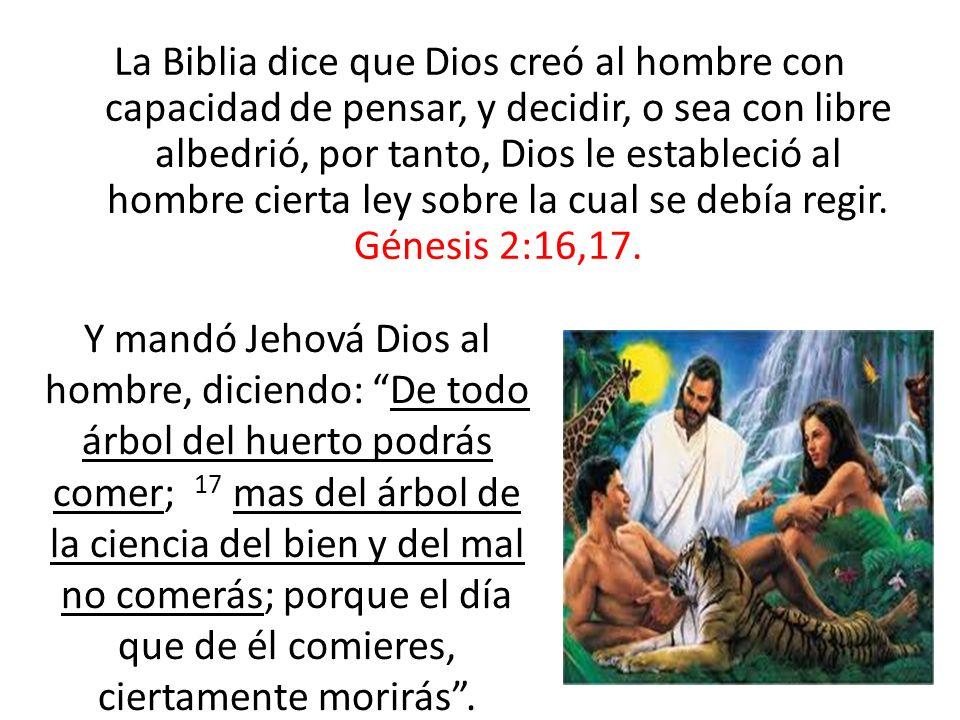 La Biblia dice que Dios creó al hombre con capacidad de pensar, y decidir, o sea con libre albedrió, por tanto, Dios le estableció al hombre cierta le