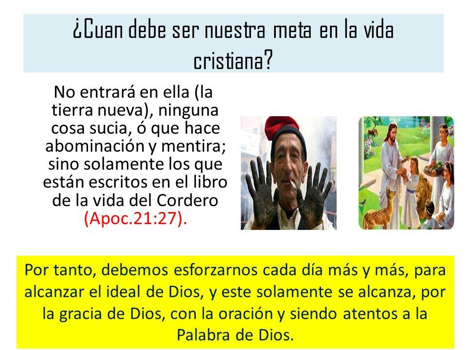 ¿Cuan debe ser nuestra meta en la vida cristiana? No entrará en ella (la tierra nueva), ninguna cosa sucia, ó que hace abominación y mentira; sino sol