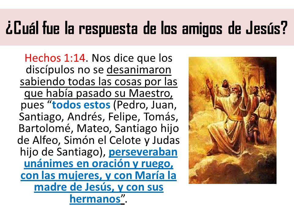 ¿Cuál fue la respuesta de los amigos de Jesús? Hechos 1:14. Nos dice que los discípulos no se desanimaron sabiendo todas las cosas por las que había p