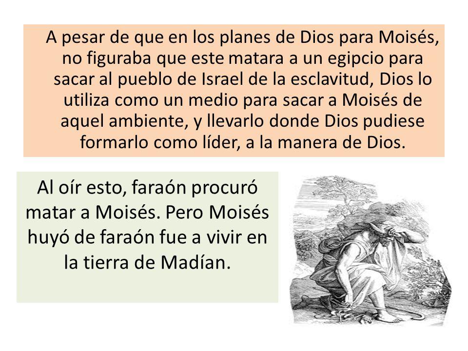 A pesar de que en los planes de Dios para Moisés, no figuraba que este matara a un egipcio para sacar al pueblo de Israel de la esclavitud, Dios lo ut