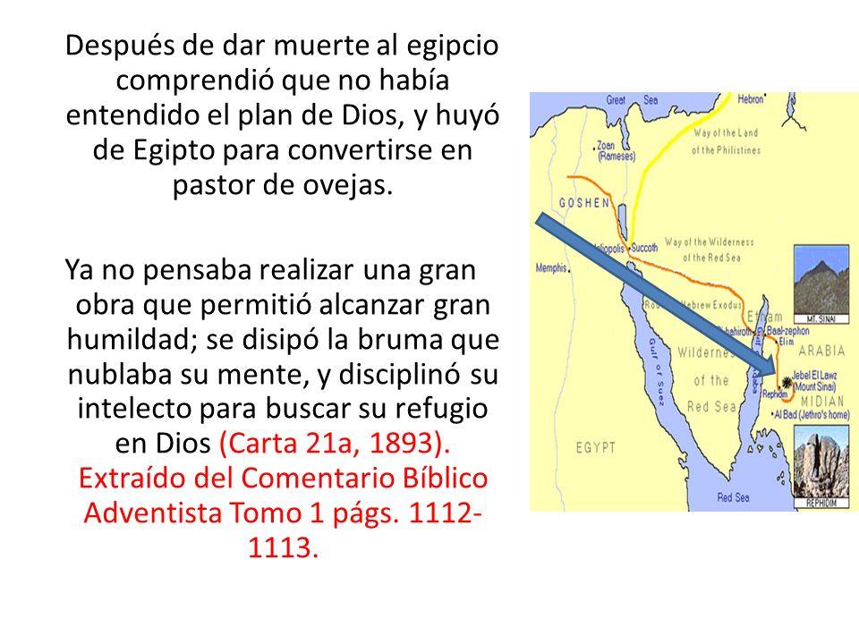 Después de dar muerte al egipcio comprendió que no había entendido el plan de Dios, y huyó de Egipto para convertirse en pastor de ovejas. Ya no pensa