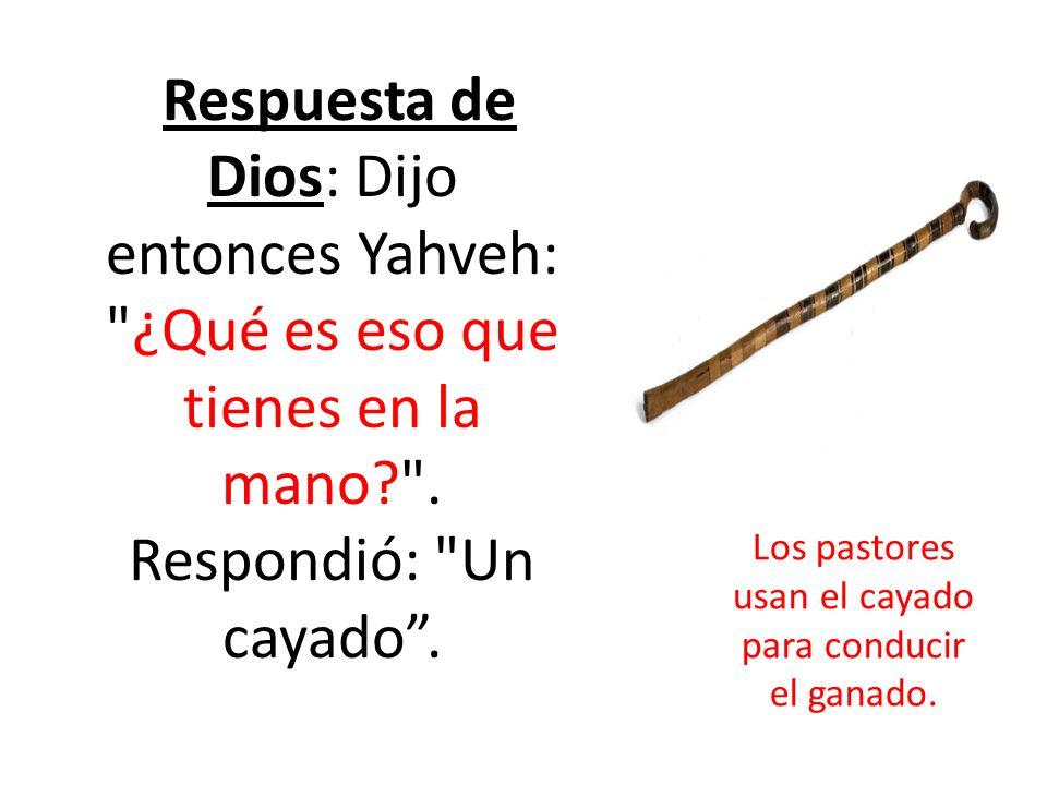 Respuesta de Dios: Dijo entonces Yahveh: