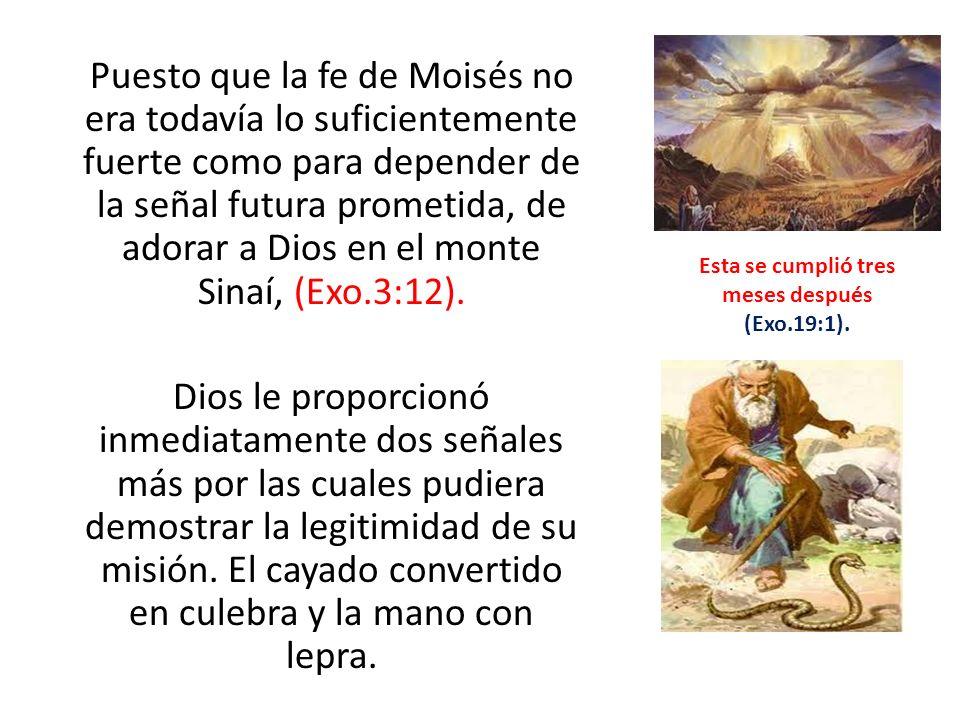 Puesto que la fe de Moisés no era todavía lo suficientemente fuerte como para depender de la señal futura prometida, de adorar a Dios en el monte Sina