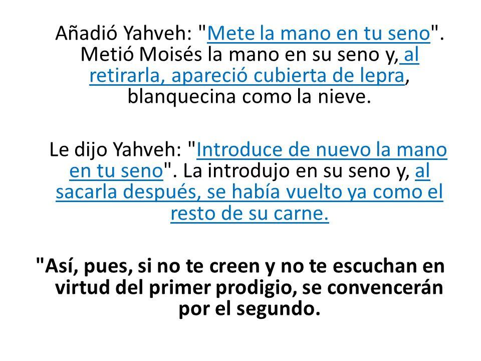 Añadió Yahveh: