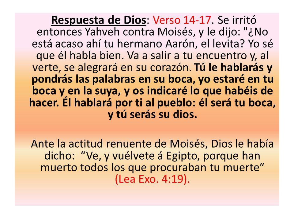 Respuesta de Dios : Verso 14-17. Se irritó entonces Yahveh contra Moisés, y le dijo: