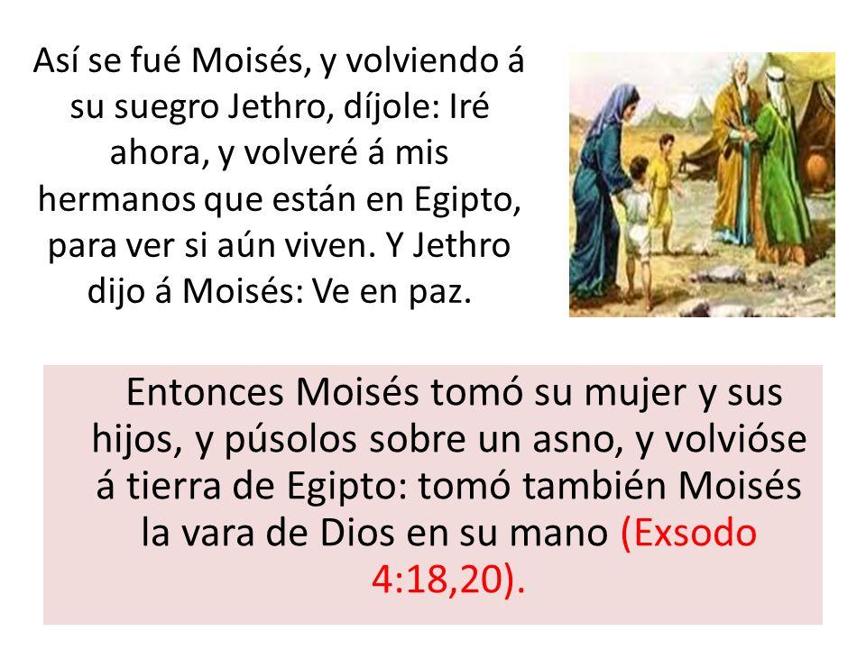 Entonces Moisés tomó su mujer y sus hijos, y púsolos sobre un asno, y volvióse á tierra de Egipto: tomó también Moisés la vara de Dios en su mano (Exs