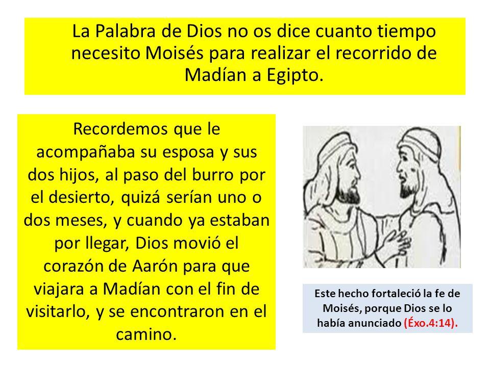 La Palabra de Dios no os dice cuanto tiempo necesito Moisés para realizar el recorrido de Madían a Egipto. Recordemos que le acompañaba su esposa y su