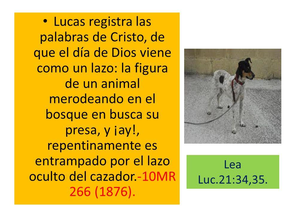 Lucas registra las palabras de Cristo, de que el día de Dios viene como un lazo: la figura de un animal merodeando en el bosque en busca su presa, y ¡