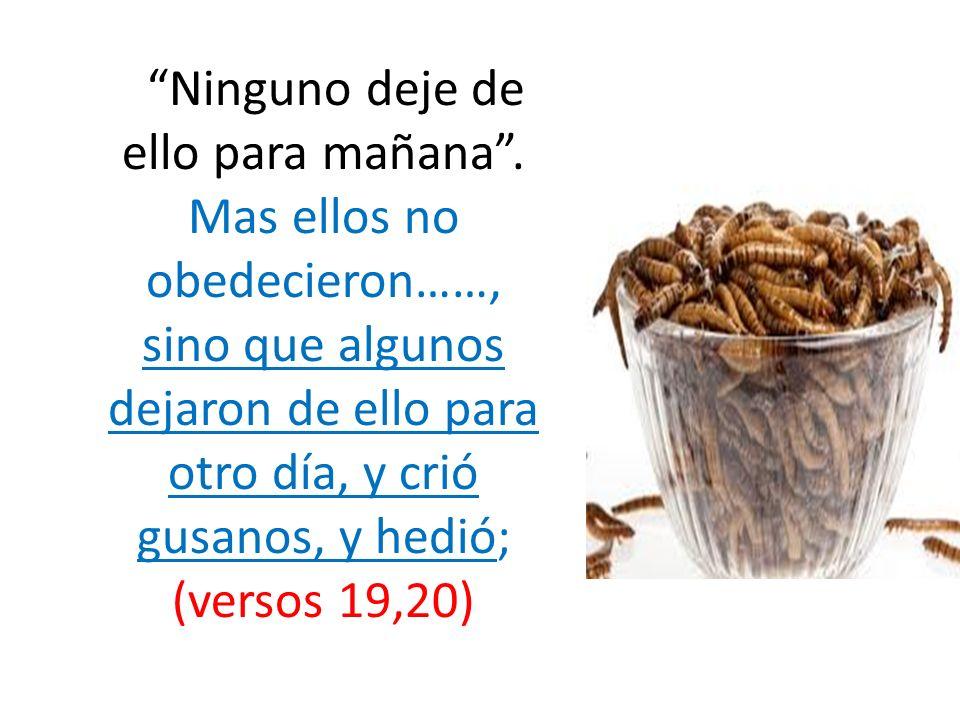 Ninguno deje de ello para mañana. Mas ellos no obedecieron……, sino que algunos dejaron de ello para otro día, y crió gusanos, y hedió; (versos 19,20)