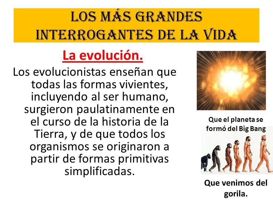 Los más grandes interrogantes de la vida La evolución. Los evolucionistas enseñan que todas las formas vivientes, incluyendo al ser humano, surgieron