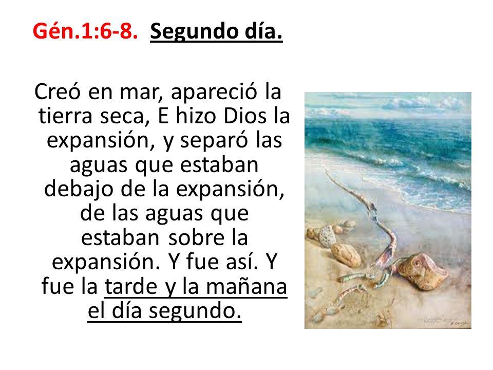 Versos 22-26.