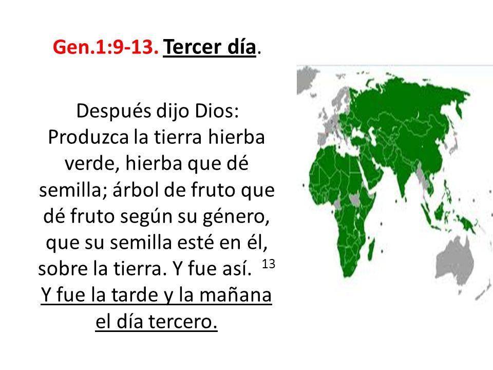 Gen.1:9-13. Tercer día. Después dijo Dios: Produzca la tierra hierba verde, hierba que dé semilla; árbol de fruto que dé fruto según su género, que su