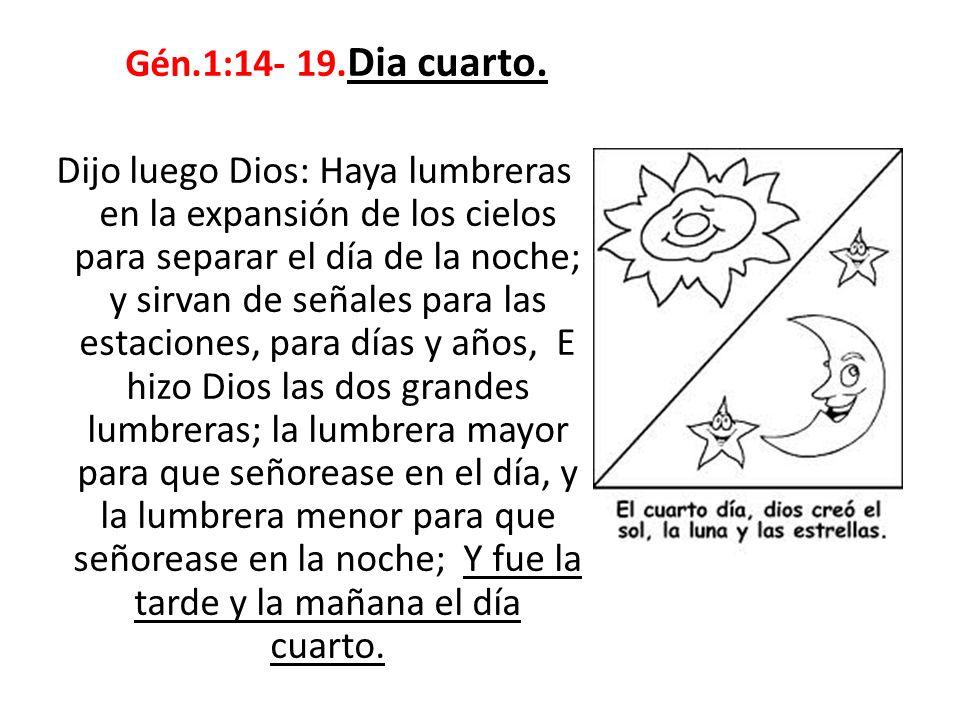Gén.1:20-23.Día quinto.