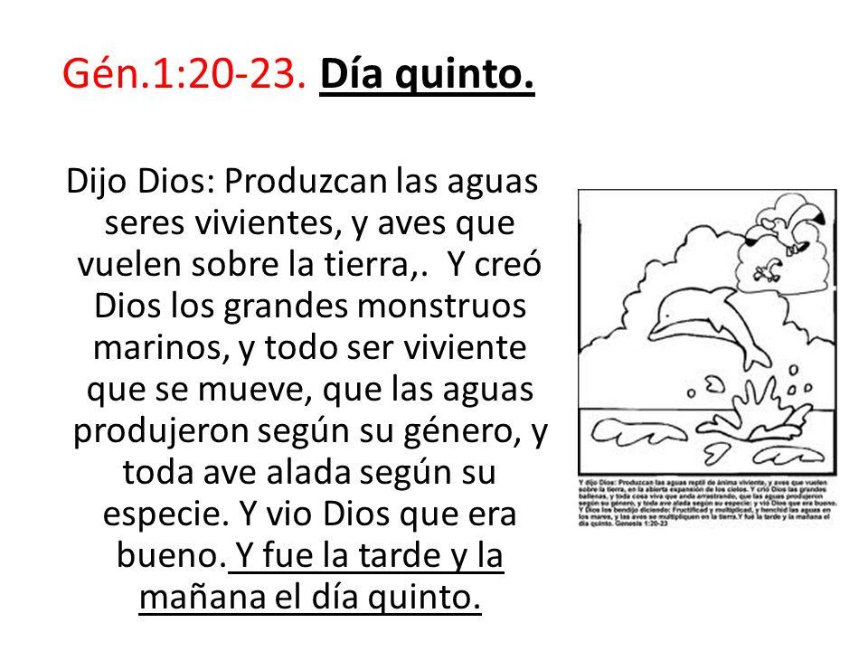 Gén.1:20-23. Día quinto. Dijo Dios: Produzcan las aguas seres vivientes, y aves que vuelen sobre la tierra,. Y creó Dios los grandes monstruos marinos