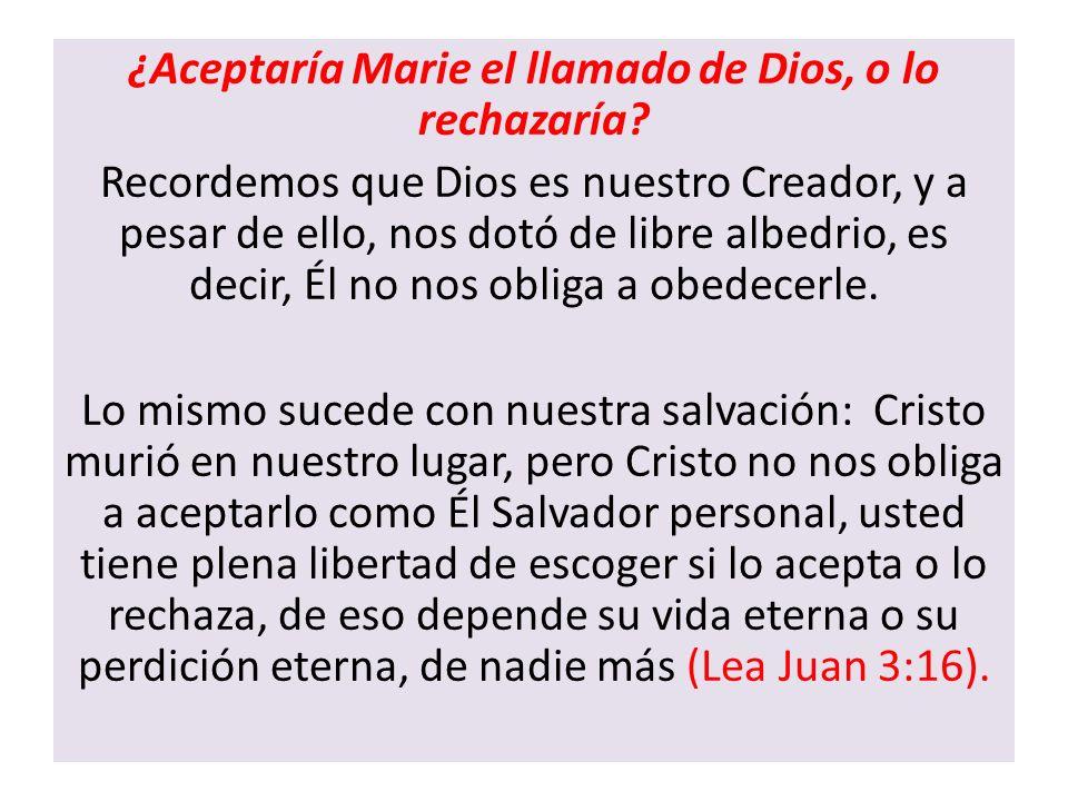 ¿Aceptaría Marie el llamado de Dios, o lo rechazaría? Recordemos que Dios es nuestro Creador, y a pesar de ello, nos dotó de libre albedrio, es decir,