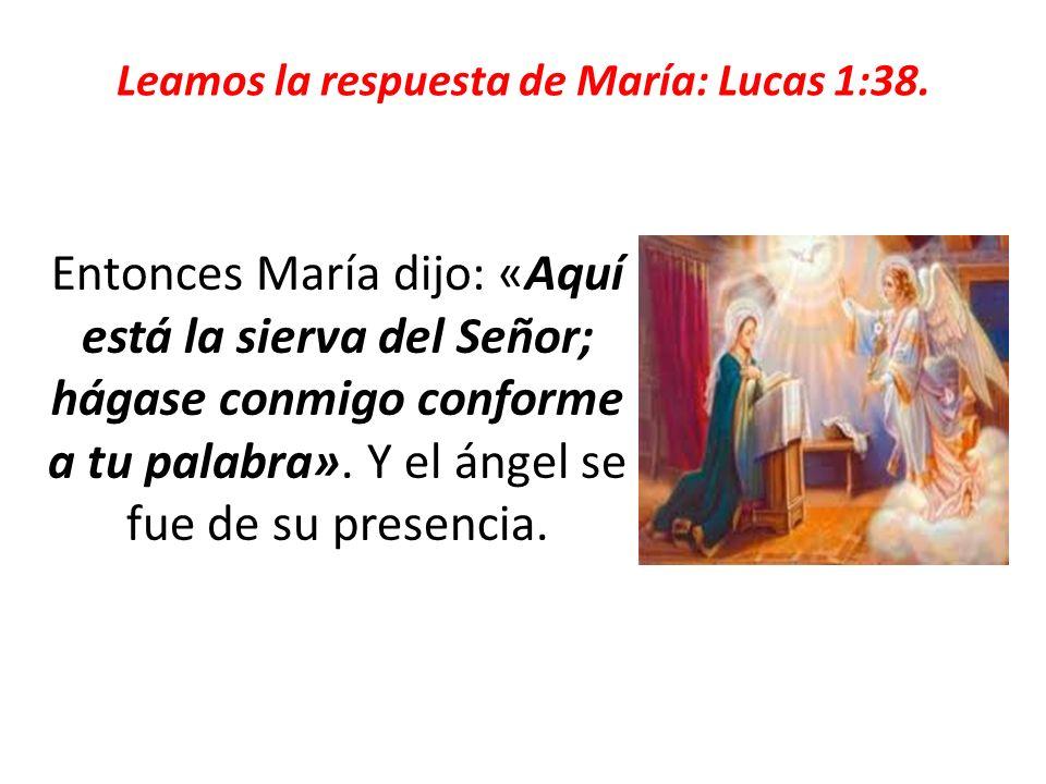 Leamos la respuesta de María: Lucas 1:38. Entonces María dijo: «Aquí está la sierva del Señor; hágase conmigo conforme a tu palabra». Y el ángel se fu