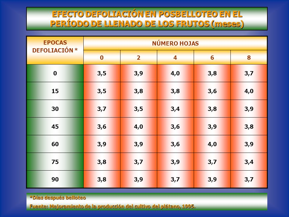 EFECTO DEFOLIACIÓN EN POSBELLOTEO EN EL PERÍODO DE LLENADO DE LOS FRUTOS (meses) EPOCAS DEFOLIACIÓN * NÚMERO HOJAS 02468 03,53,94,03,83,7 153,53,8 3,6