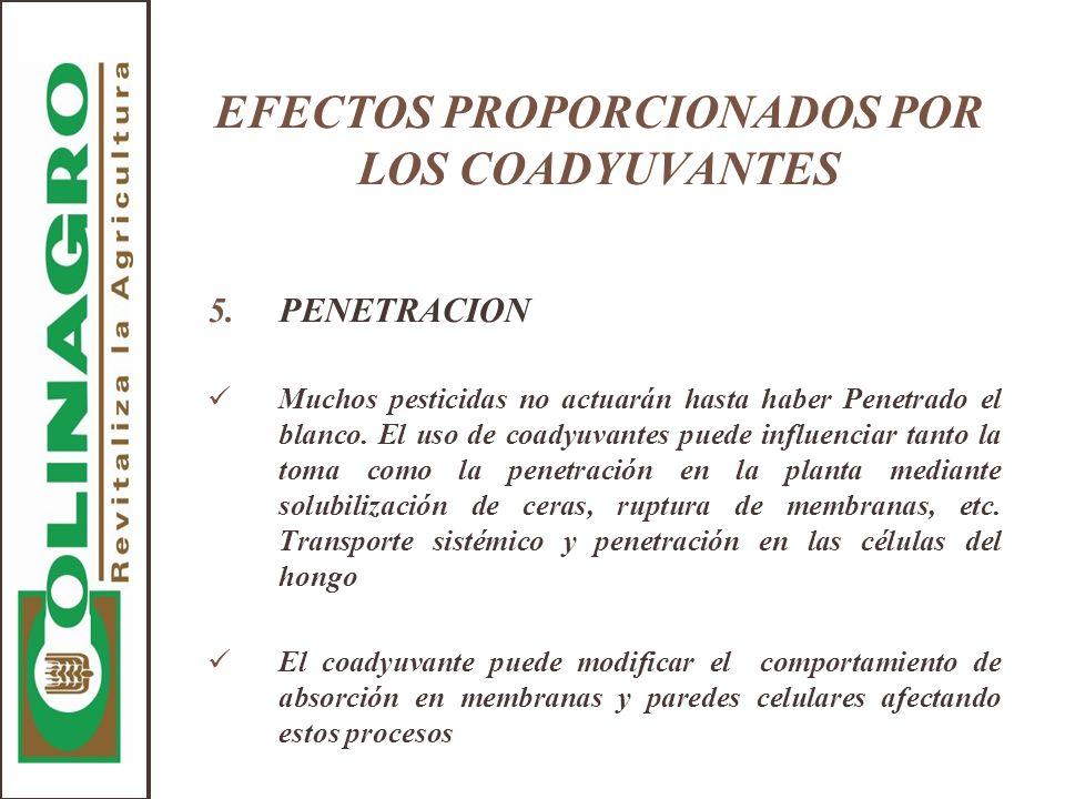 EFECTOS PROPORCIONADOS POR LOS COADYUVANTES 5.PENETRACION Muchos pesticidas no actuarán hasta haber Penetrado el blanco. El uso de coadyuvantes puede