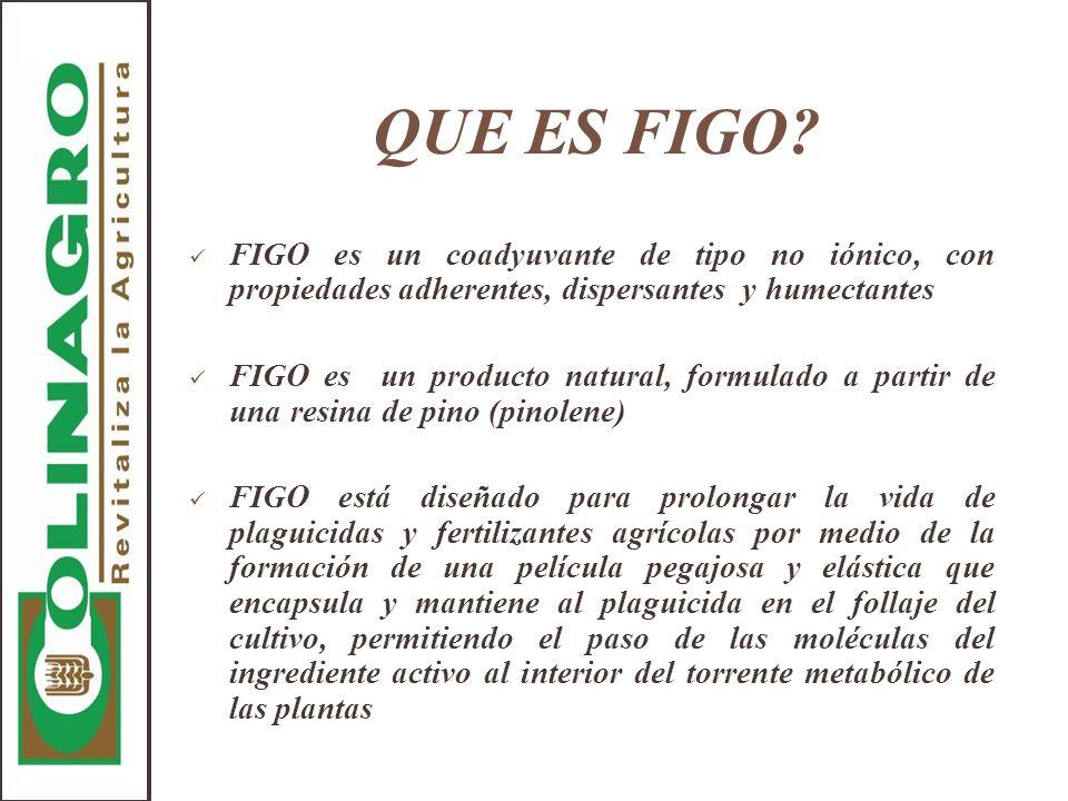 QUE ES FIGO? FIGO es un coadyuvante de tipo no iónico, con propiedades adherentes, dispersantes y humectantes FIGO es un producto natural, formulado a