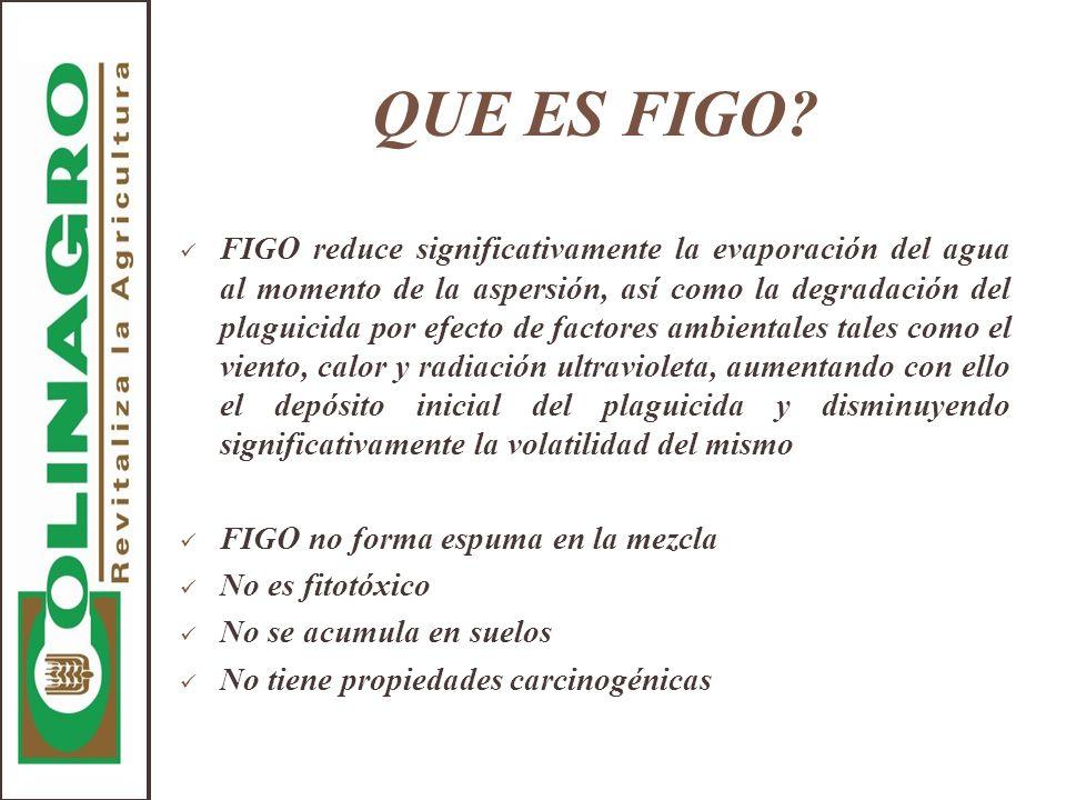 QUE ES FIGO? FIGO reduce significativamente la evaporación del agua al momento de la aspersión, así como la degradación del plaguicida por efecto de f
