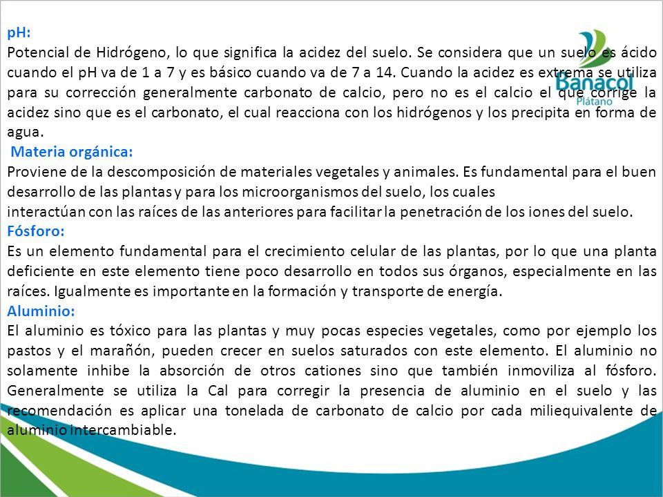 pH: Potencial de Hidrógeno, lo que significa la acidez del suelo. Se considera que un suelo es ácido cuando el pH va de 1 a 7 y es básico cuando va de