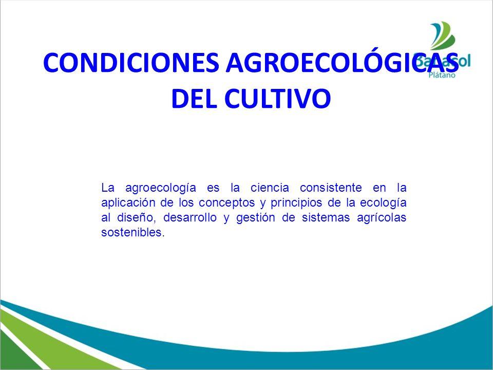 CONDICIONES AGROECOLÓGICAS DEL CULTIVO La agroecología es la ciencia consistente en la aplicación de los conceptos y principios de la ecología al dise