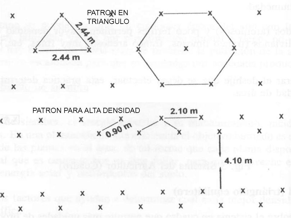 PATRON PARA ALTA DENSIDAD PATRON EN TRIANGULO