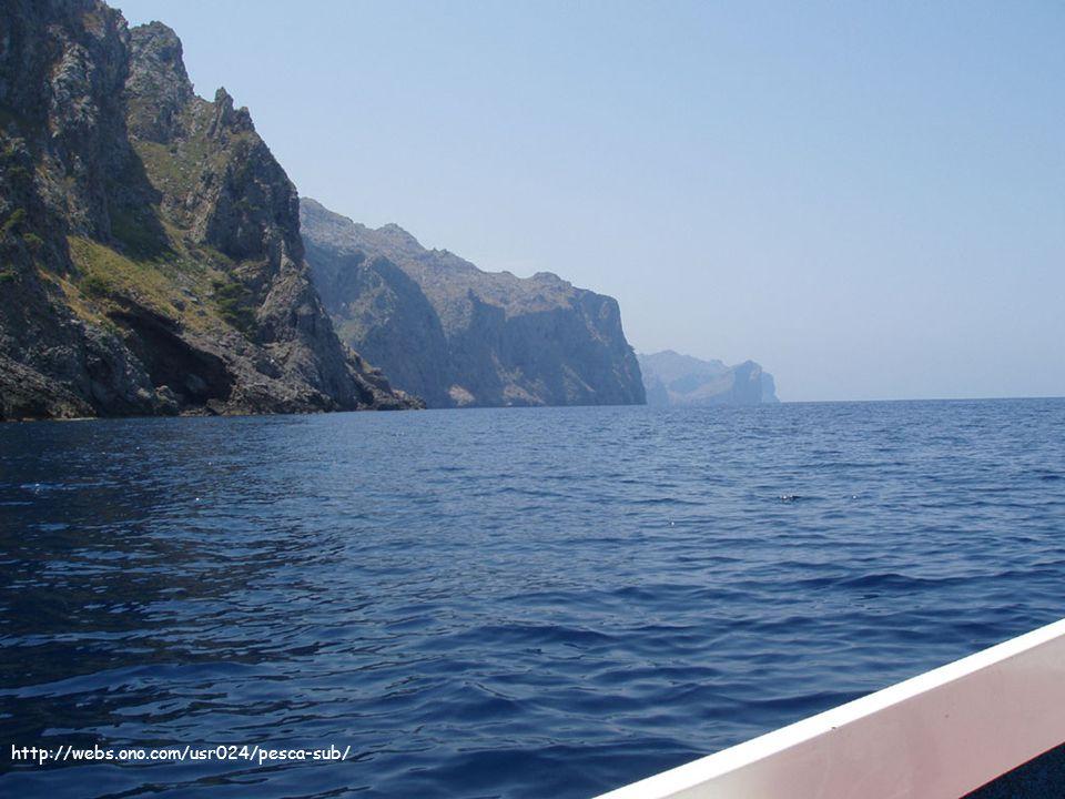 A lescola... http://webs.ono.com/usr024/pesca-sub/