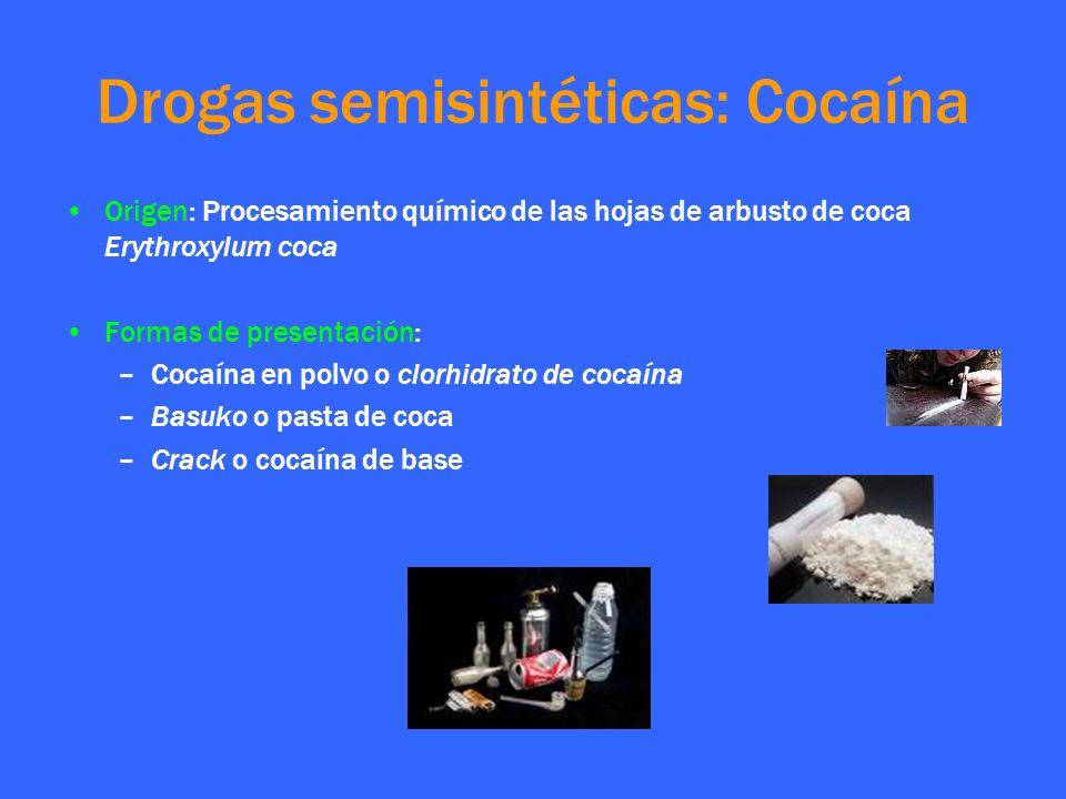 Drogas semisintéticas: Cocaína Origen: Procesamiento químico de las hojas de arbusto de coca Erythroxylum coca Formas de presentación: –Cocaína en pol