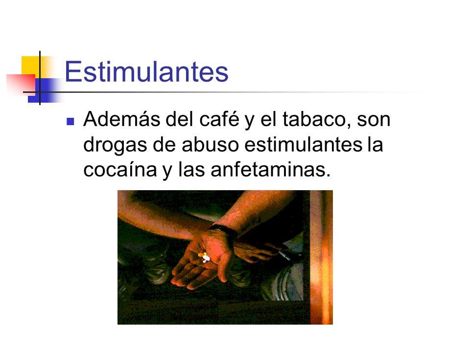 Estimulantes Además del café y el tabaco, son drogas de abuso estimulantes la cocaína y las anfetaminas.