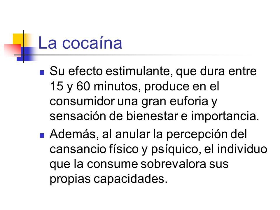 La cocaína Su efecto estimulante, que dura entre 15 y 60 minutos, produce en el consumidor una gran euforia y sensación de bienestar e importancia. Ad